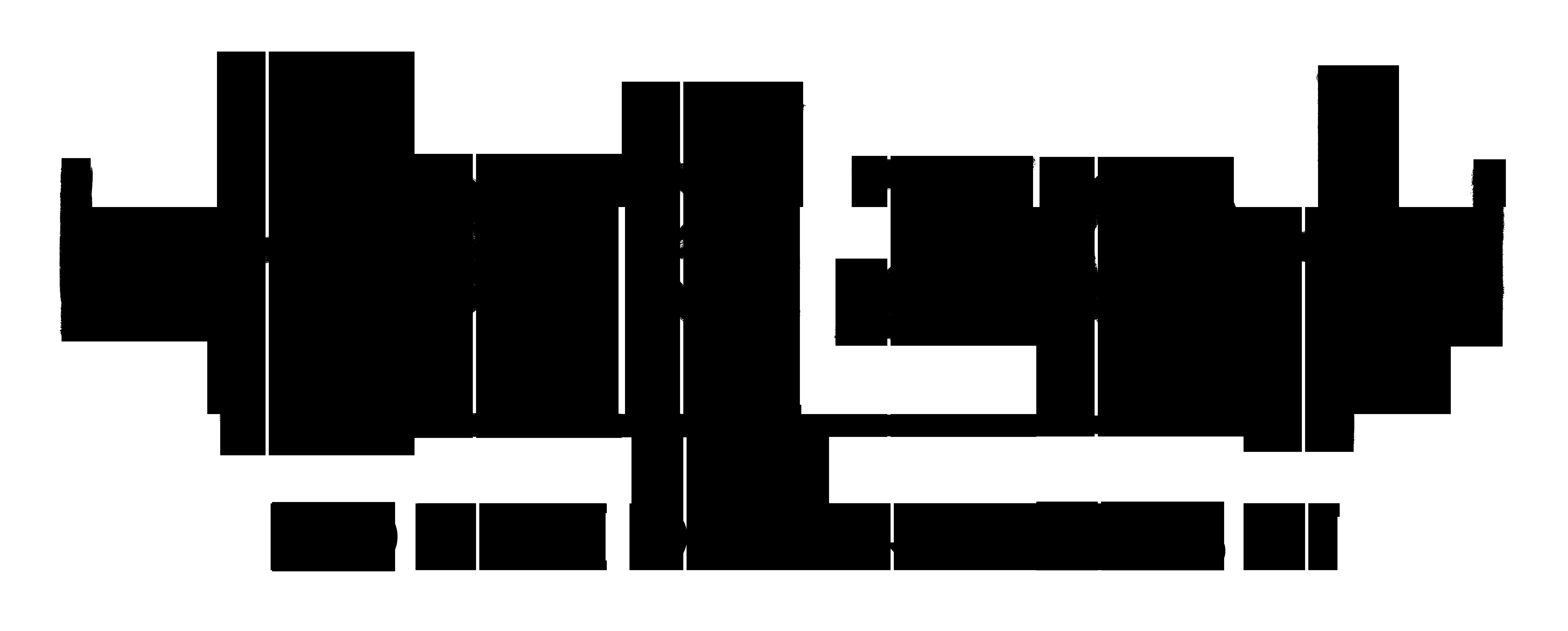 Horizon logo image
