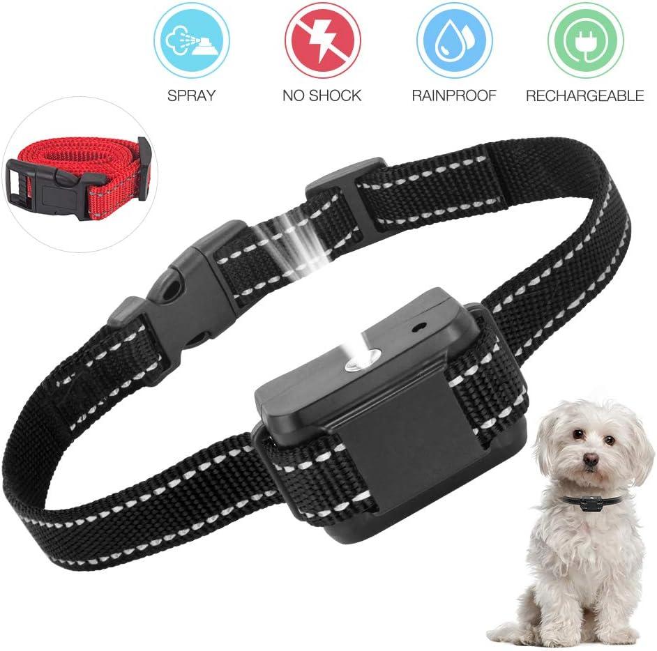 collier anti aboiement petit pour chien
