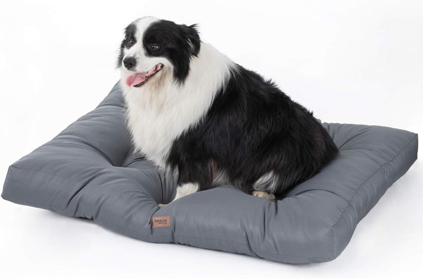 tapis chien xxl