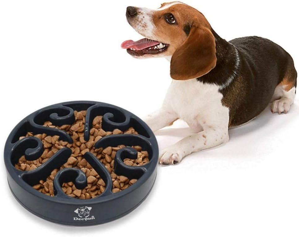 gamelle anti glouton gros chien
