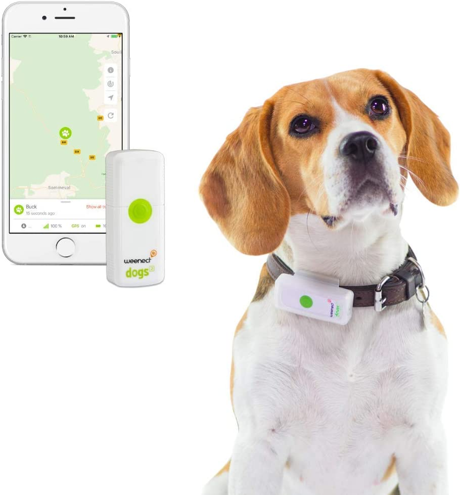 comparatif collier gps chien chasse