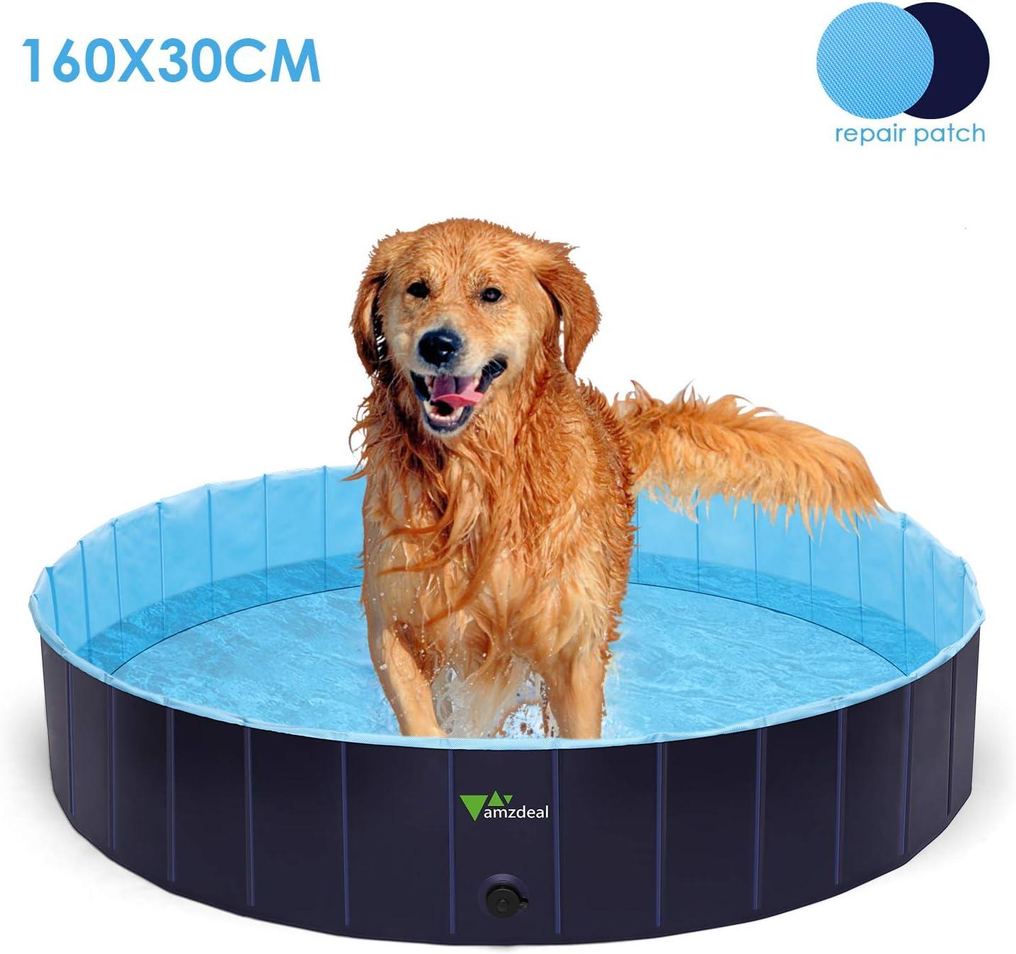 piscine pour chien pas cher