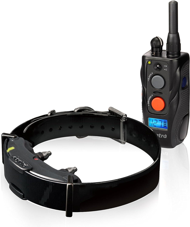 collier electrique anti fugue