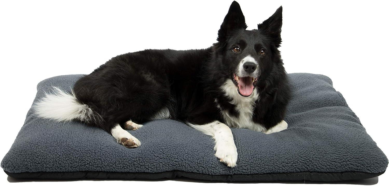 tapis pour chien pas cher