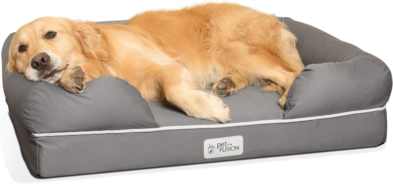 canapé pour grand chien