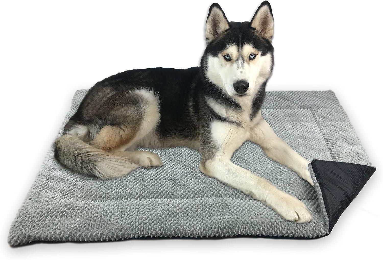 tapis chauffant chien