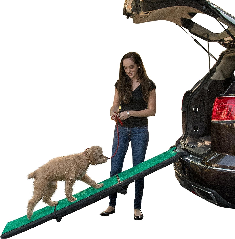 rampe telescopique pour chien